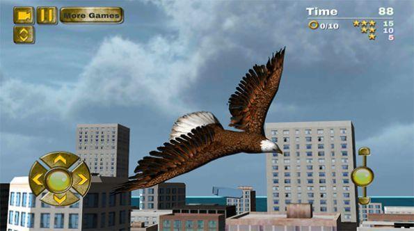 鹰鸟模拟器图2