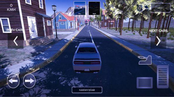 漂移停车模拟图2
