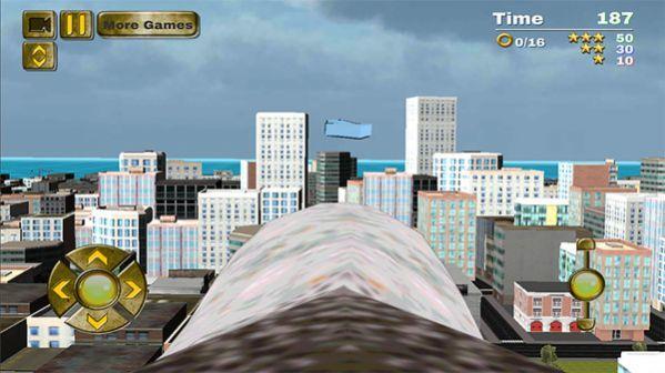 鹰鸟模拟器图1