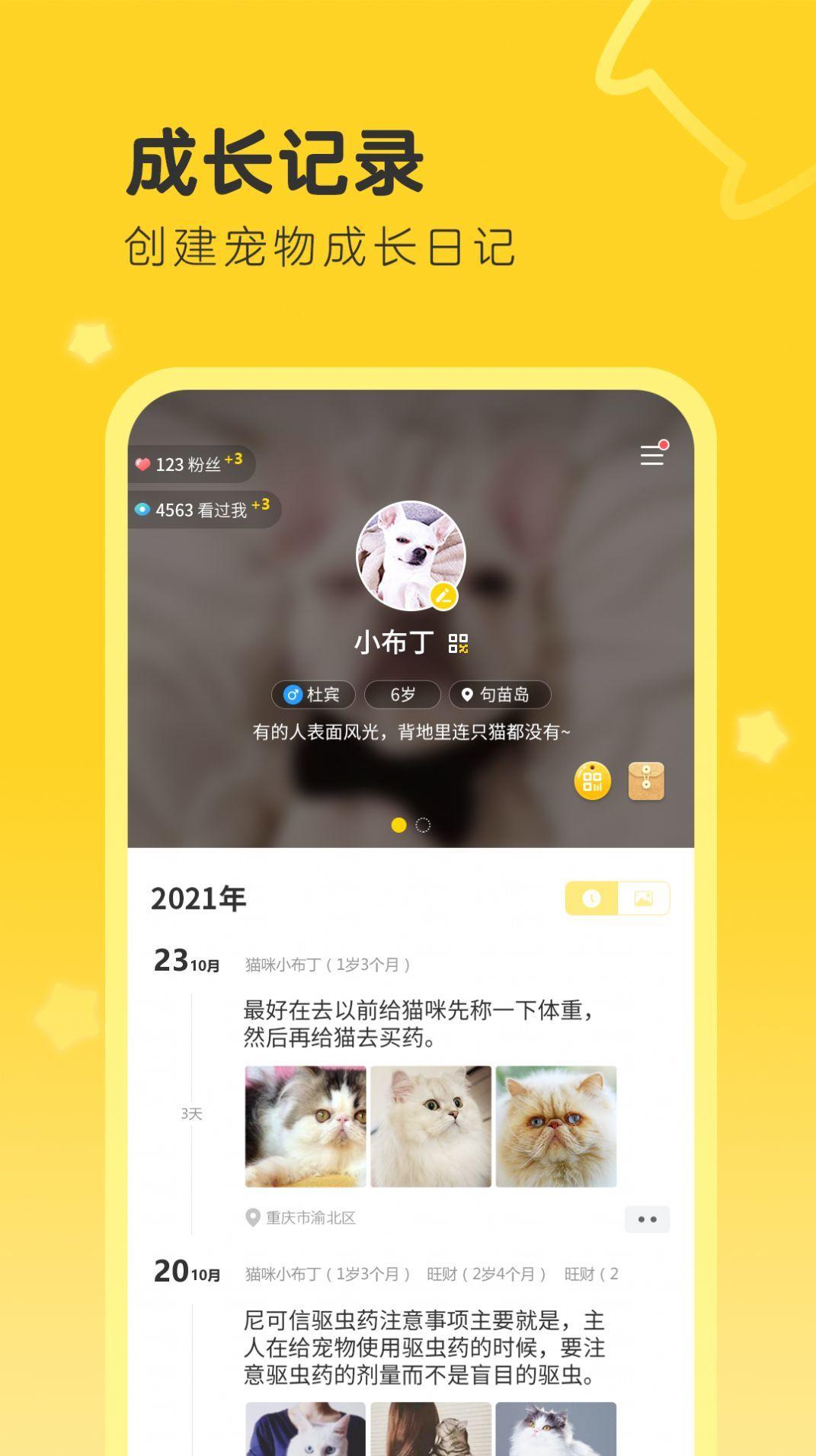 句苗岛app手机版1