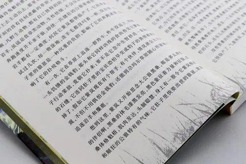 热门小说app大全