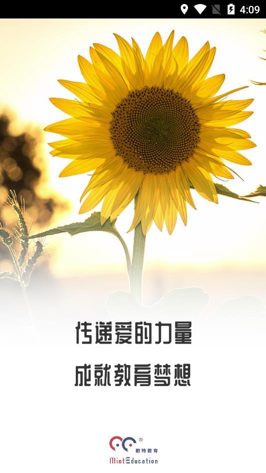 葵花籽智记1